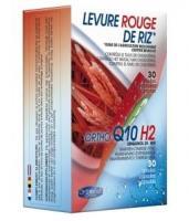 Orthonat Levure rode rijst & ortho Q10H2 25 mg 2 x 30 caps