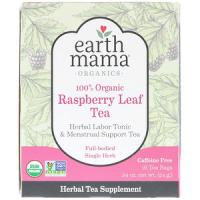 Earth Mama Earth Mama, 100% biologische frambozenbladthee, full-bodied enkel kruid, 16 theezakjes, .84 oz (24 g