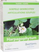 Buurmanns Harpagophytum