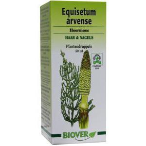Biover Equisetum averse tinctuur  (heermoes)