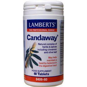 Lamberts Candaway