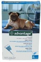 Advantage Hond 100 bestrijding vlo