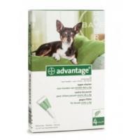 Advantage Hond 40 -4 kg bestrijding vlo